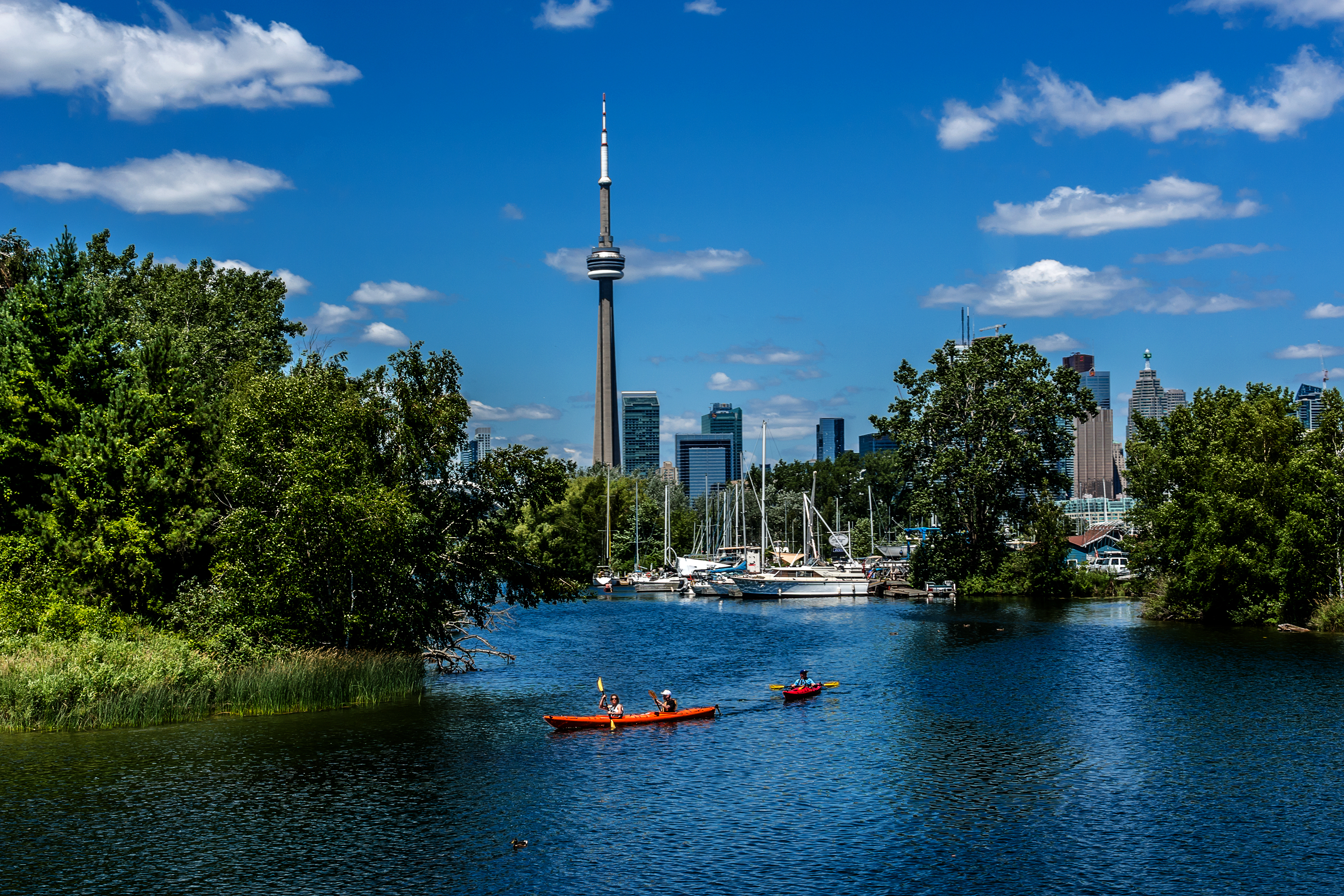 Toronto skyline with lake in foreground